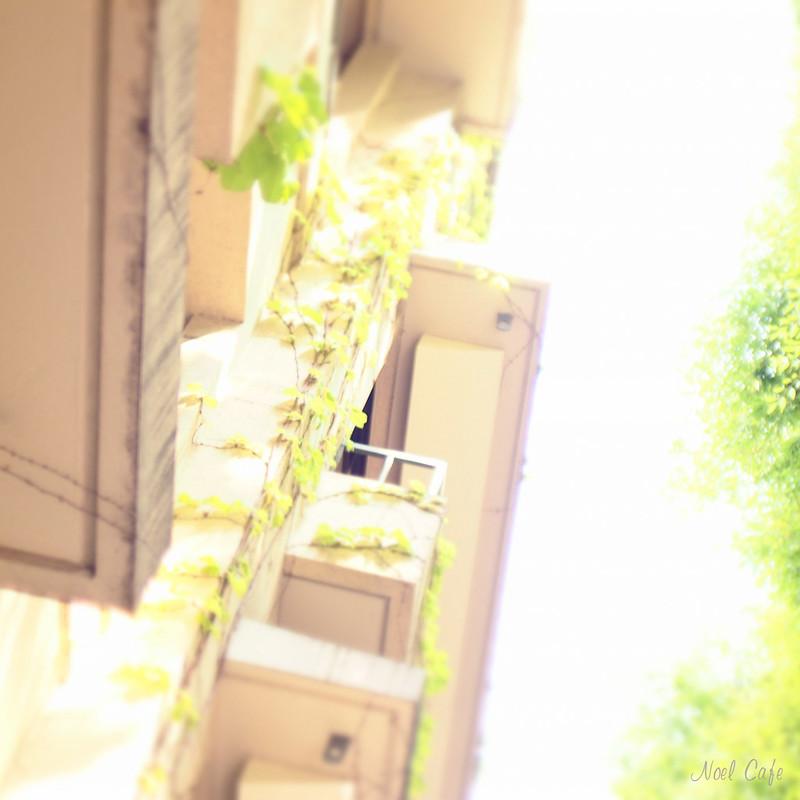 アパートメントハウス by Noël Café