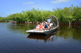 Everglades Airboats, Alligators (Photos by Pete Cross) | by VISIT FLORIDA