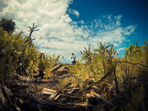 Explore, experience & evolve | by nattu