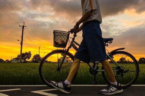 sunset summer bikepath countryside warm rustic taiwan 台灣 台南 臺灣 iphone 新營 sinying 臺南 xinying psexpress iphone6