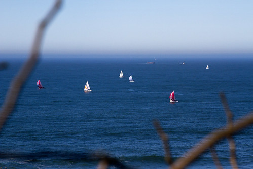 Sailboats | San Francisco | by THEMACGIRL*