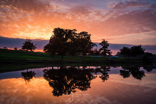sunset kildare ireland carton house reflections trees water lake amazing sky clouds colours canon5dmark3 canon 2470 mm stillness nature outdoors travel discover sightseeing silouette