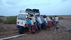 Djibouti 2013 - Enlisé près de Godoria