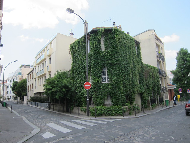 Ivy covered corner