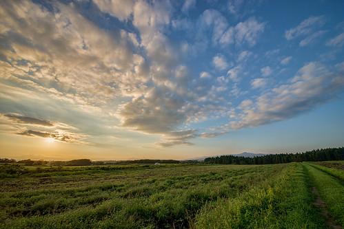 sony slta99v sigma 1224mm travel travelphotography sunset twilight calm farmingarea hakodate hokkaido hokkaido2016 北海道 函館市 夕陽