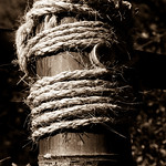 Bamboo and rope