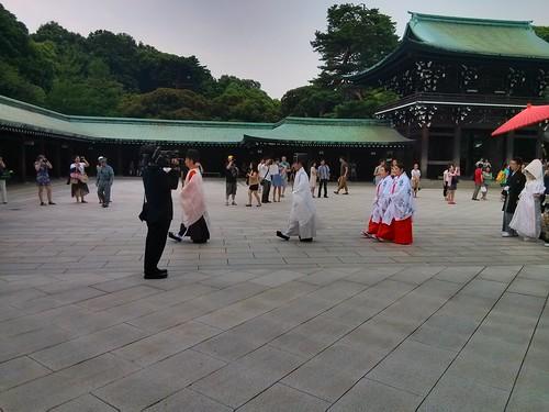 日本行-明治神宮