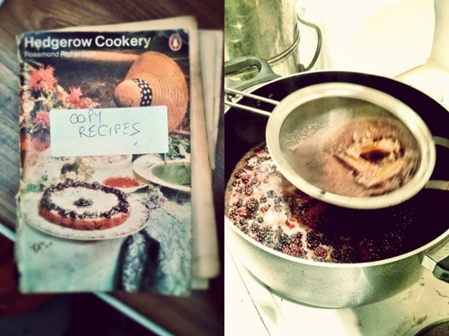 Hedgerow cookery | by Amber Fjord