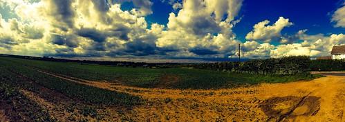 Rampton Field Landscape Panorama Cottenham May 2015