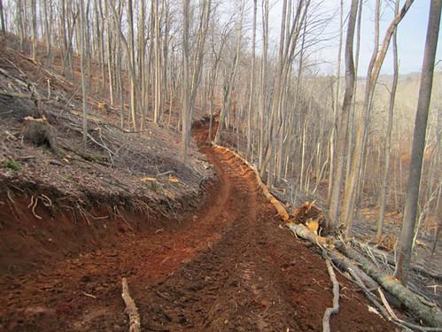 New skid trail.