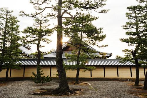 japan temple kyoto buddhism myoshiji