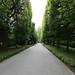 Longwood Path