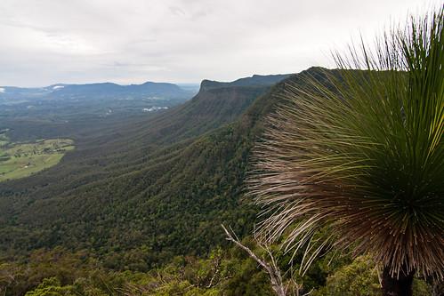 nature landscape photography australia places nsw geology aus volcanic genre continents interests borderrangesnationalpark canon40d borderrangesnp
