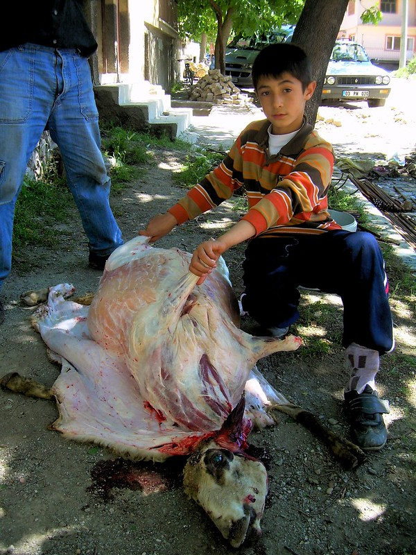 Butchering a sheep on this sidewalk by bryandkeith on flickr