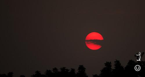 light sunset sky sun canon dark evening swarnjayantipark