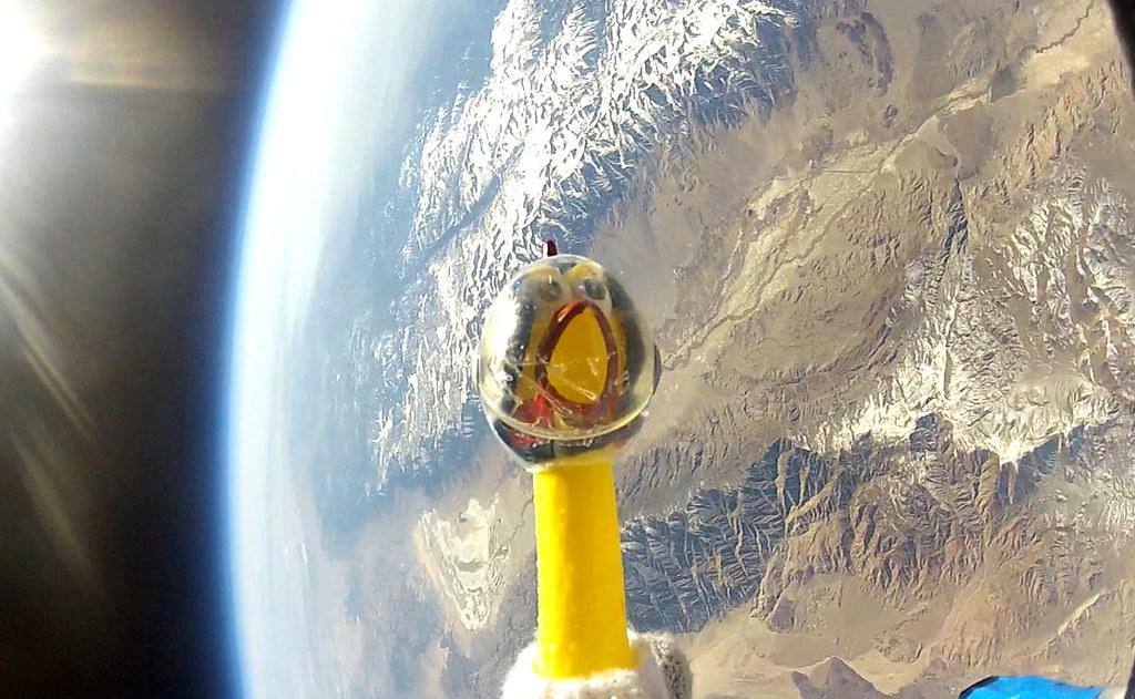 Camilla in Space