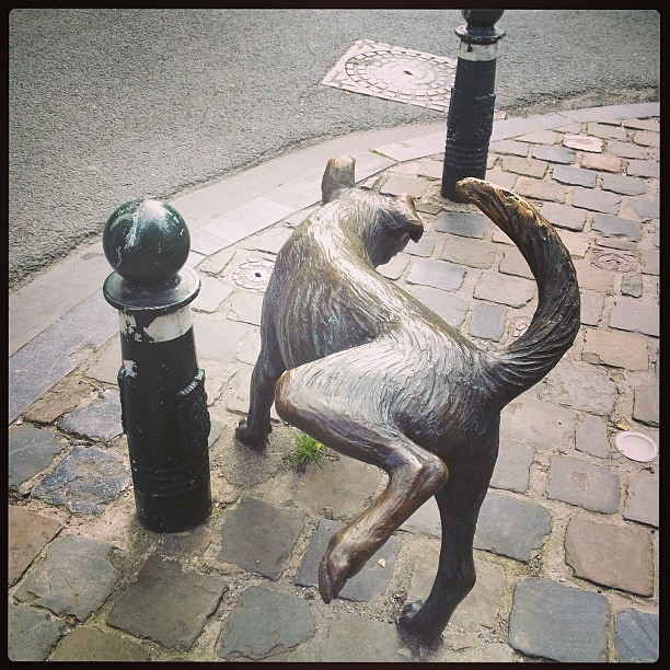 a peeing dog statue. #brussels you never fail to amuse me! #ttot #travel