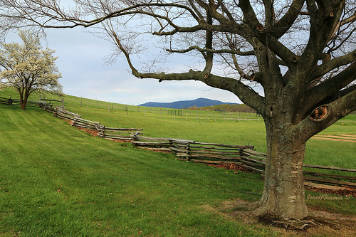 virginia rockbridgecounty shenandoahvalley virginiamountains mccormickfarm nrhp nationalhistoriclandmark majestictrees fencesgates april2012 april 2012 canon241054l