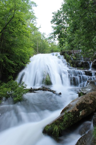 trees nature water waterfall spring rocks forrest run national roaring