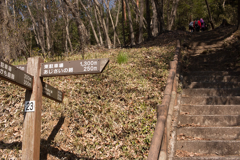 20160326-三毳山-0074.jpg