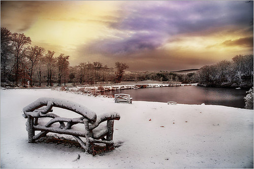 landscape winter nature dawn harrimanpark newyork 2016 weather snow morning harrimanstatepark water bench lake outdoors harriman clouds unitedstates sky sunrise city southfields us season frost everypixel plants beautyinnature trees tranquilscene scenics tree forest coldtemperature ice frozen