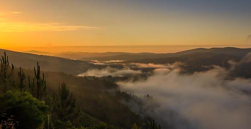 portugal europe europa zêzere river rio ribeira sunrise golden hour central pampilhosa da serra landscape forrest nature