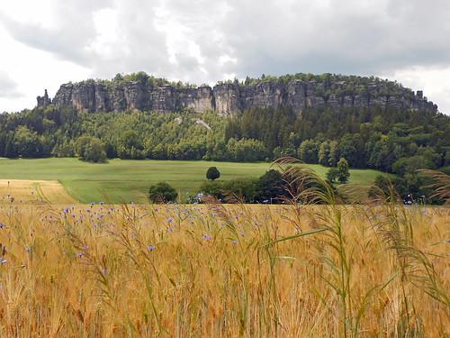 sommer landschaft elbsandsteingebirge pfaffenstein sandsteiner sandsteinerphotography