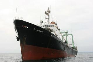 IUU_illegalKoreanfishingvesselGabon_raw_ac_RF | by IUUwatch
