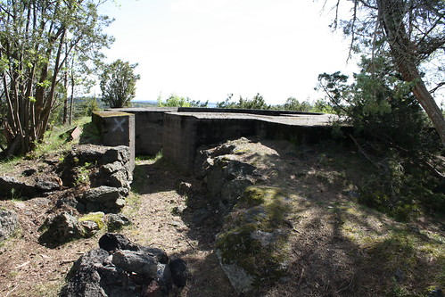 Vardås Nøtterøy (43)