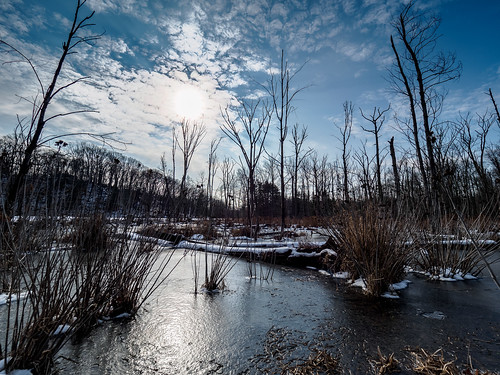 clevelandmetropark ice landscape rockyriverreservation winter snow olmstedfalls ohio unitedstates us