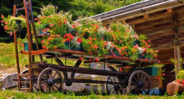 Chariot fleuri