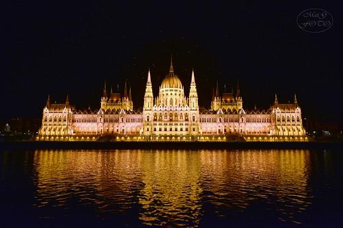 night nikon hungary nacht budapest nightscene nightview ungarn danube nightpicture nachtaufnahme donau parlamentsgebäude parliamentbuilding nachtstimmung nikond800