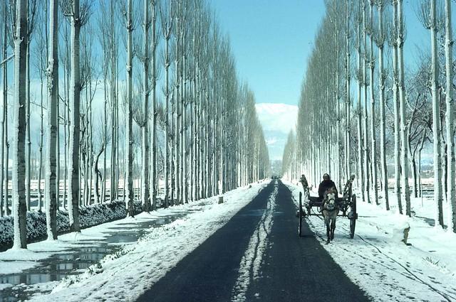 654 Kashmir Winter Gulmarg trip