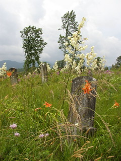 Wild Flower Gravestone