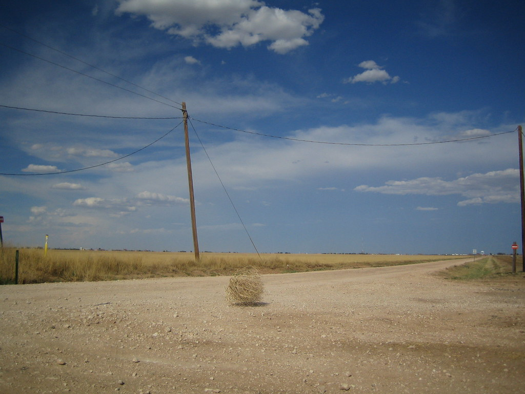 Image result for tumbleweed free use
