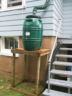 Rain barrel | by idiot king