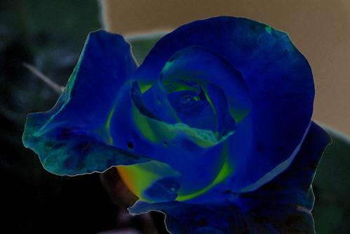 azul | by ateneo fotográfico