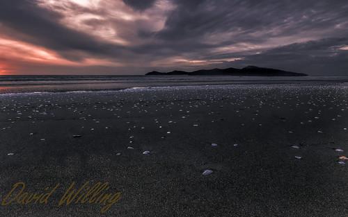 new sunset sea orange shells seascape beach clouds seashells sunrise spectacular landscape island coast warm vibrant shell zealand wellington shellfish coastline kapiti paekakariki beachscape