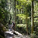 Viajefilos en Australia. Blue Mountains 008