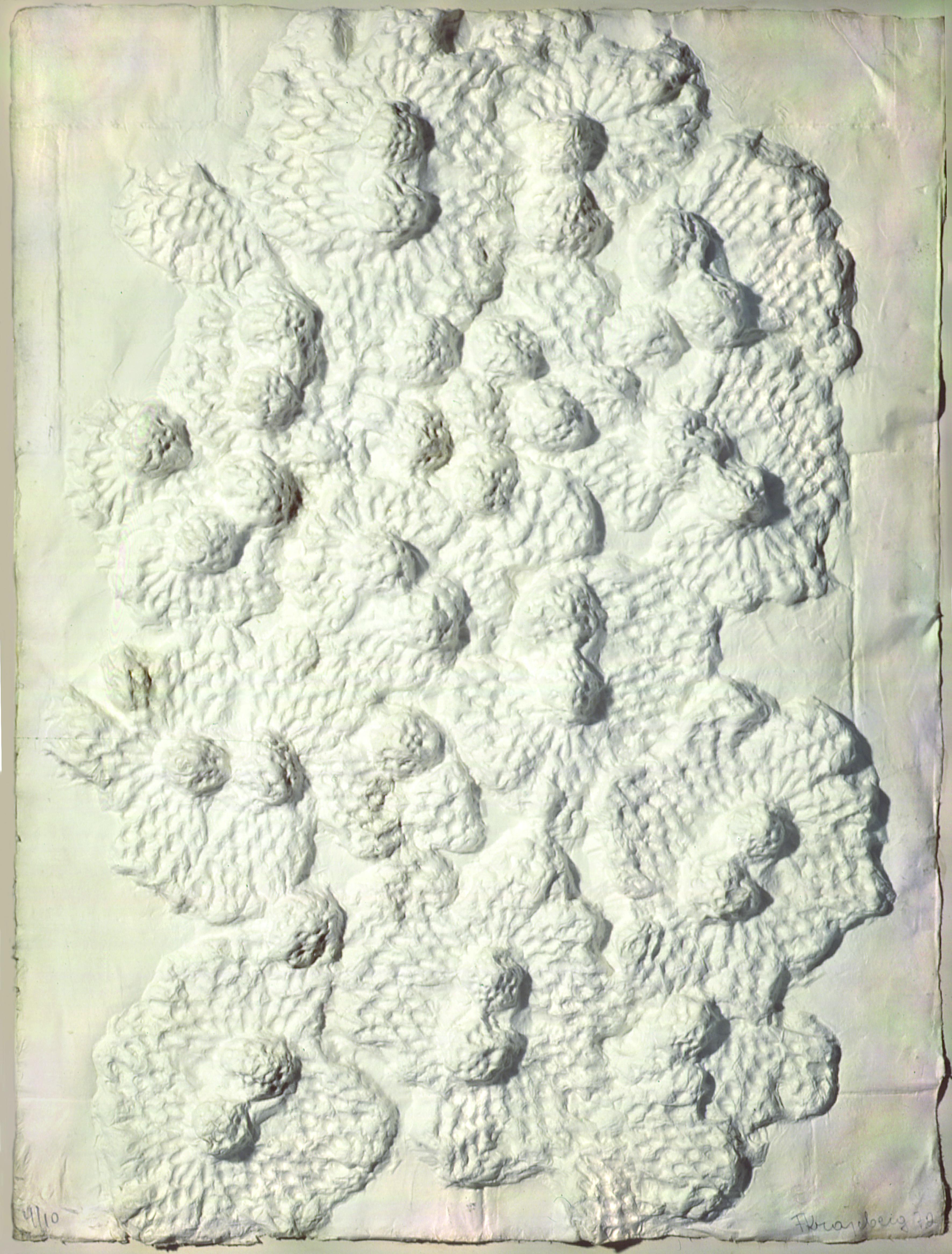 Natureza Autor: Frans Krajcberg  Ano: 1972 Técnica: Modelagem de gesso impresso em papel japonês  Dimensões: 75cm x 57cm