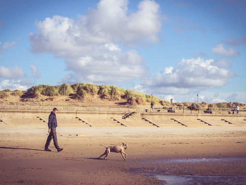 Walking at Crosby | by Ali-PG
