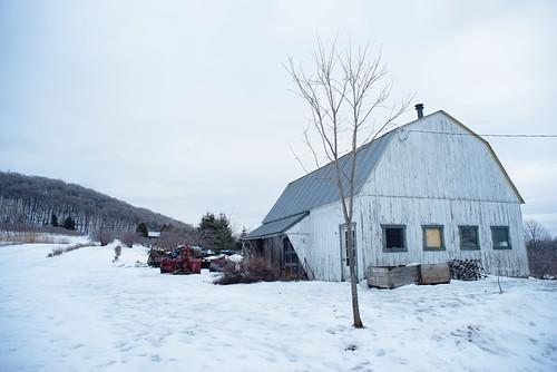 barn landscape sony a7 olympus zuiko 35mm rawtherapee linux winter canada quebec hiver neige