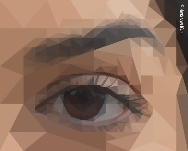Polygon Eye