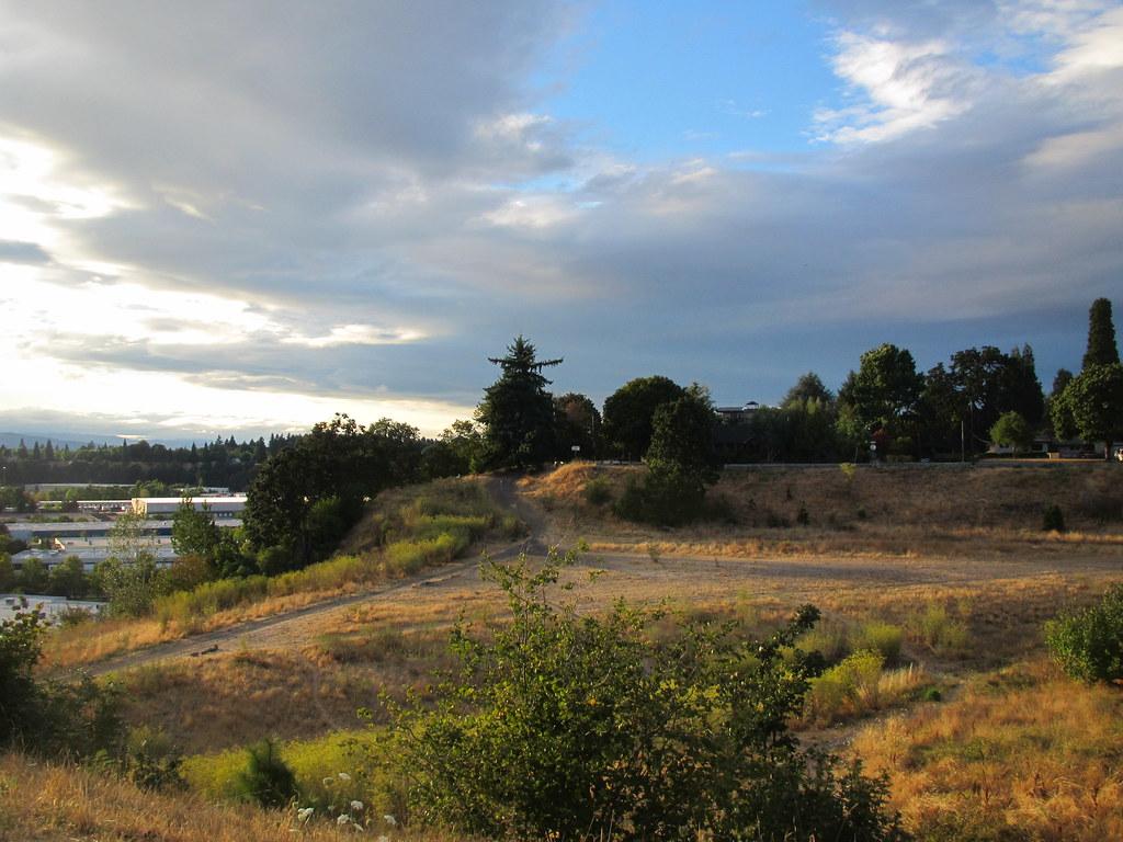 Portland City Walks No  2 - Golden Hour | No color filters o
