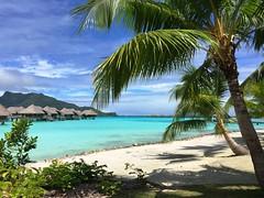 2617e2  beautiful Bora Bora