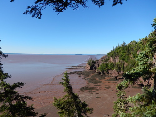 Hopewell Rocks - 1