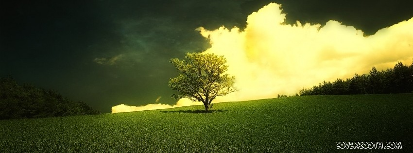 Beautiful Morning Widescreen Hd Wallpaper Facebook Cover