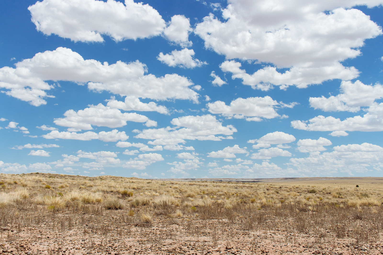 Cumulus clouds in a blue sky over scrublands at Homolovi State Park in Arizona