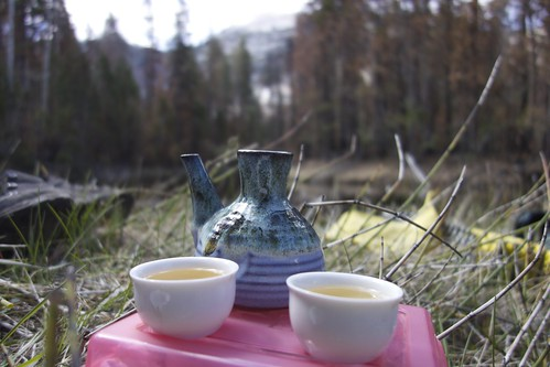 Tea Time along the Merced River | by V.H.S.
