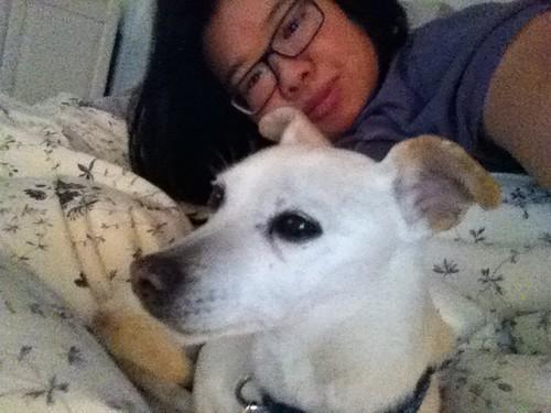 PIC: @jozjozjoz & #JackieBrown lounging around in bed, on a cold, rainy LA day   by @jozjozjoz